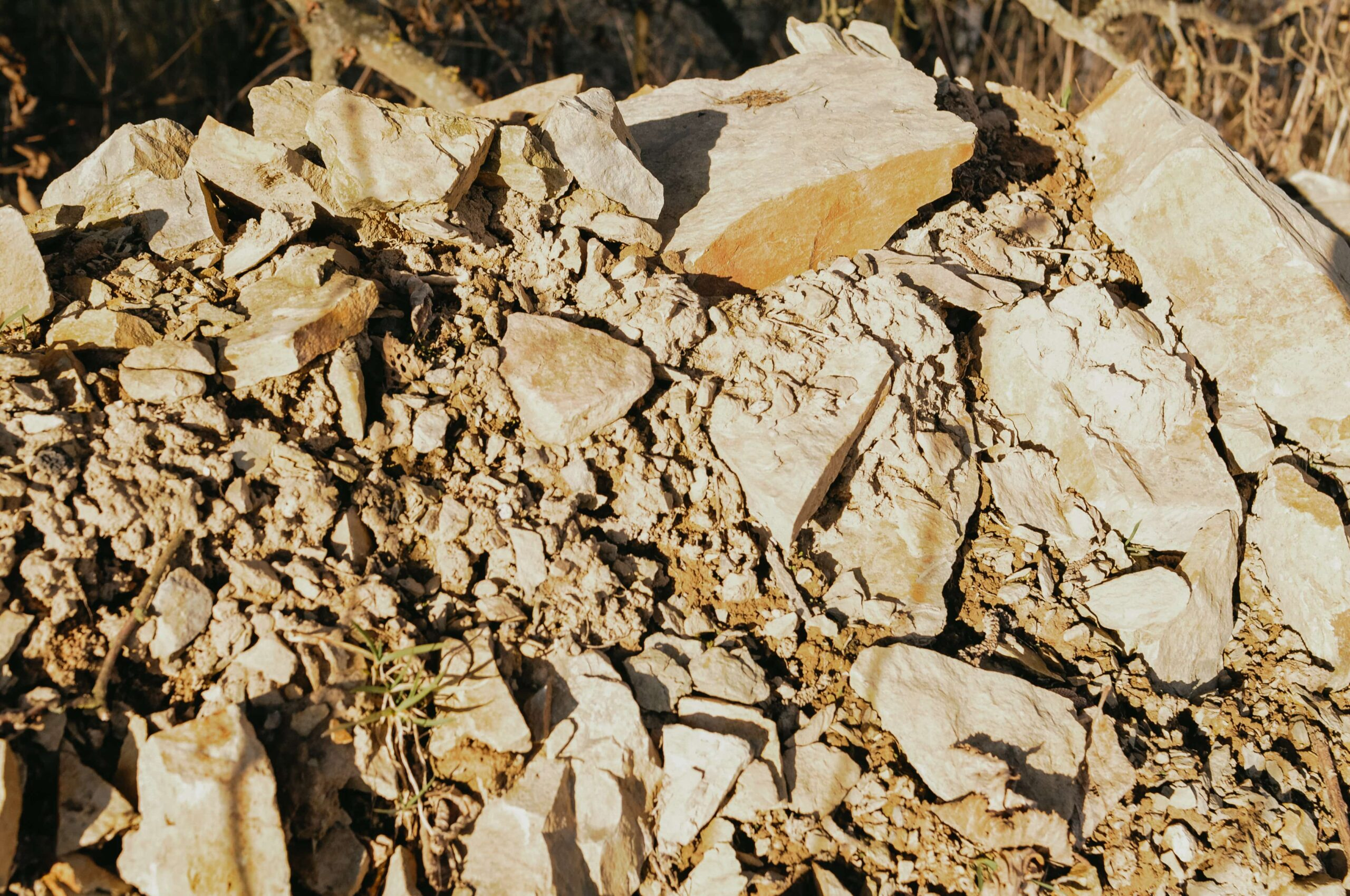 Hromada hlíny kde rostliny čekají na svou šanci