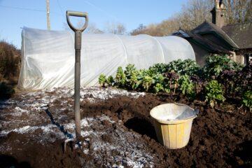 Vápnění záhonů a pH půdy